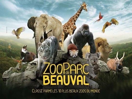 zoo de Beauval